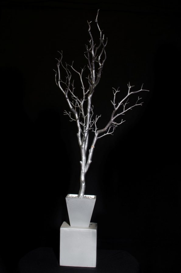 Manzanita Tree - Triangle Box - Silver