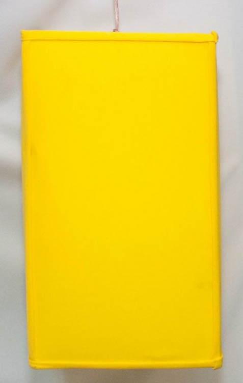 Hanging 17 Inch Rectangular Sunshine Yellow Pendant Lamp-0