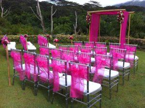 Pink Sheer Ties-0