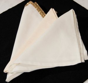 Ivory Cloth Napkins-0
