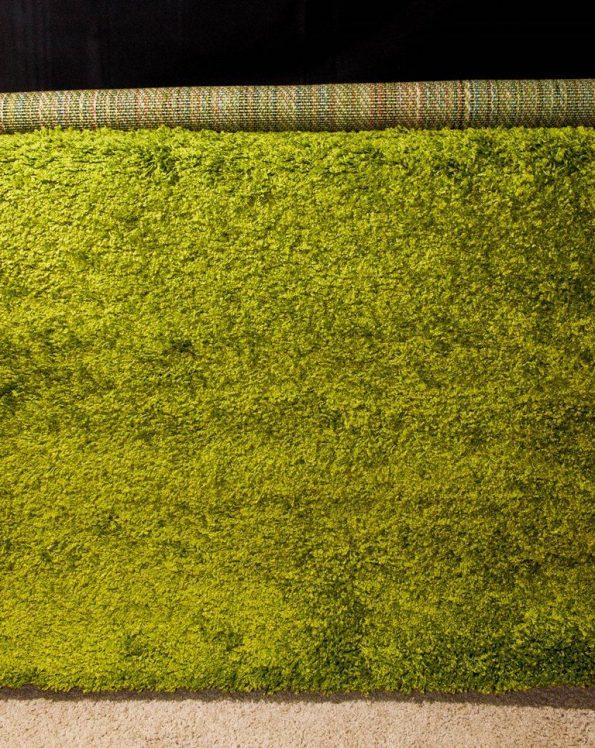 Lime Green Rug 4'x6'
