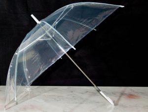 Clear Umbrella (Medium)-0