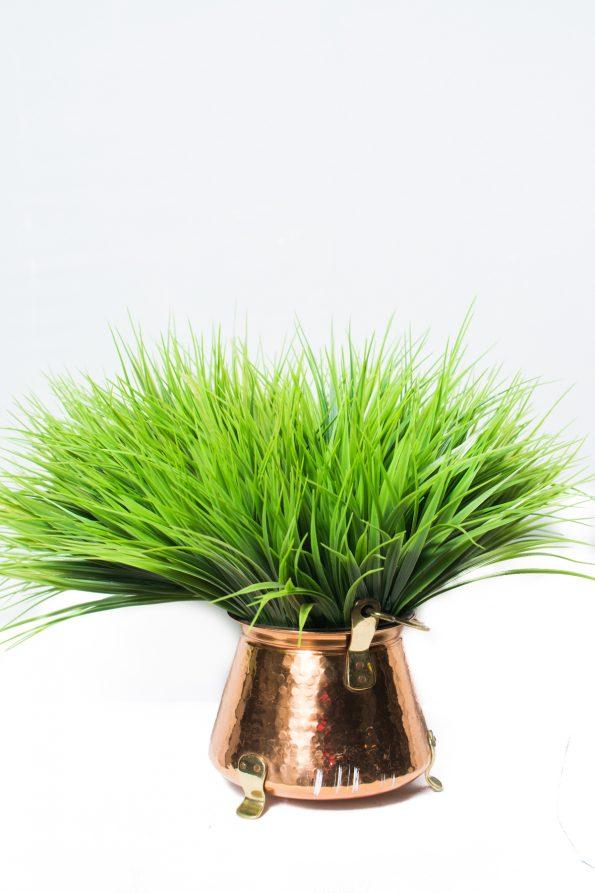 Cymidum Grass Arrangement-0
