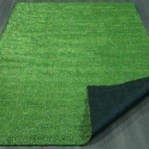 Grass Carpet 20'x10'
