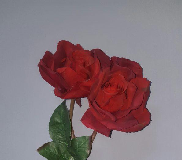 27' Rose Stem Cranbery